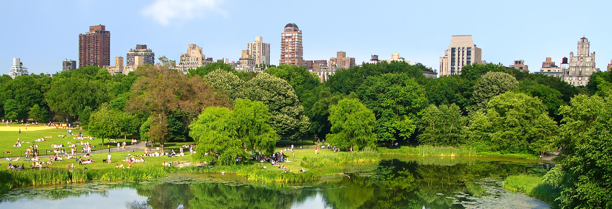 Central Park in New York . Design Inspiration for a Sanctuary-Like Parc Central EC