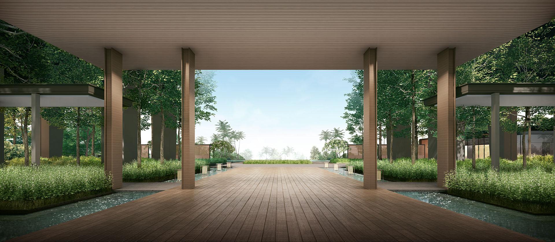Calming Landscapes . Forest Corridor