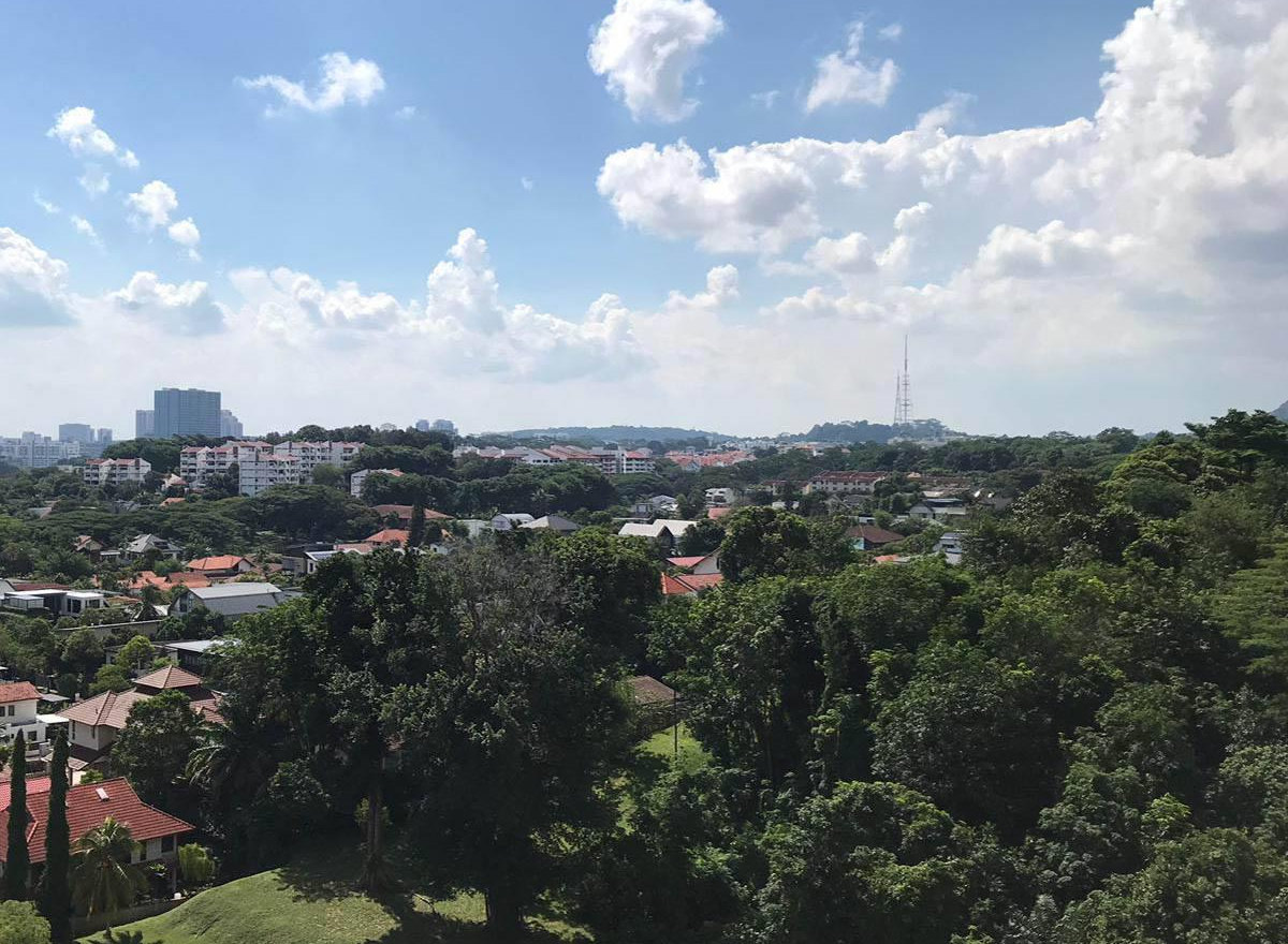 Ki Residence Site . View North towards Bukit Timah