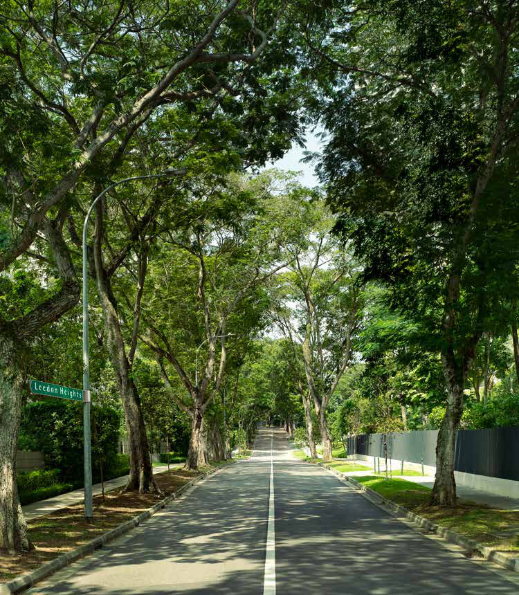 Leedon Green at Leedon Heights . A Leafy Enclave
