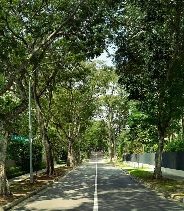 Leedon Green at Leedon Heights . A Leafy Enclave