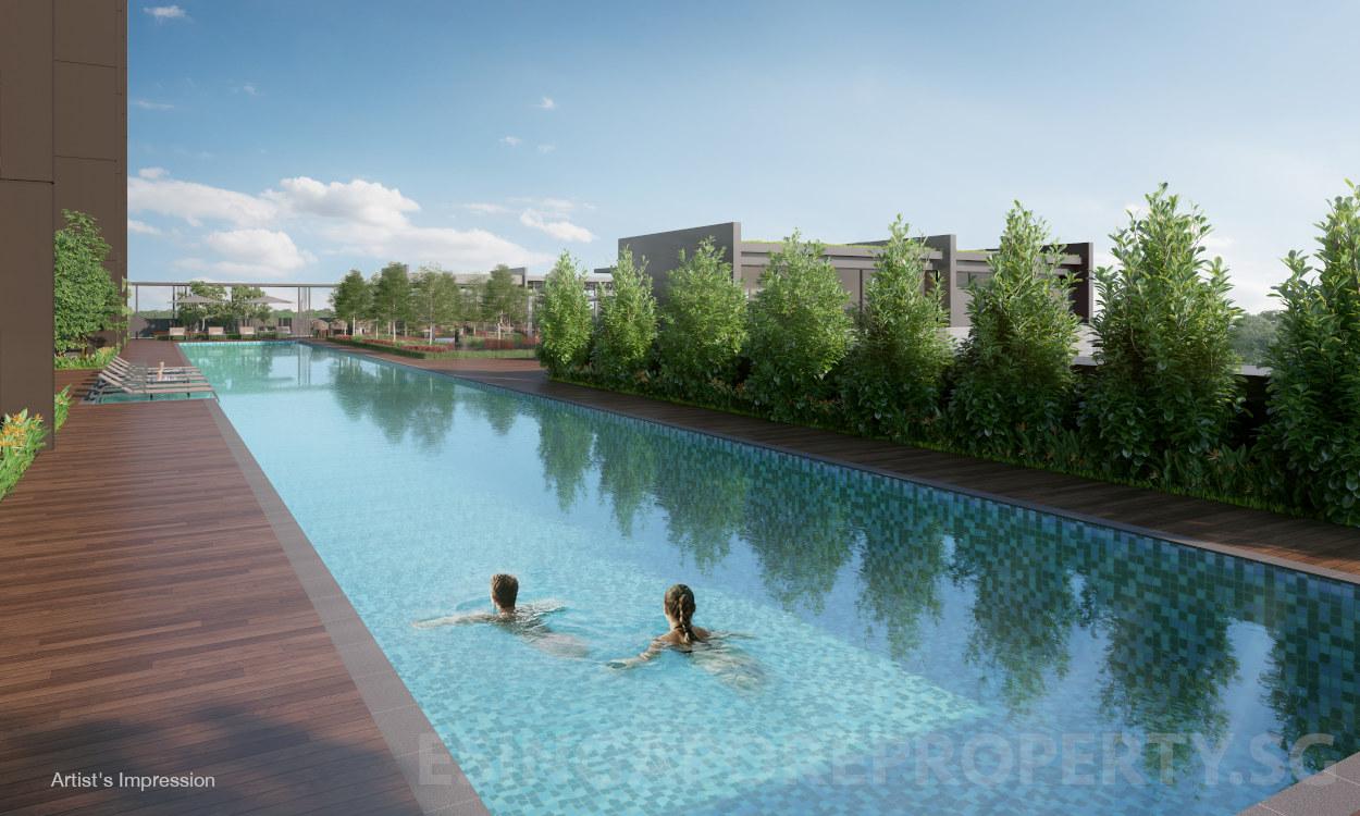 Pullman Condominium . Lap Pool