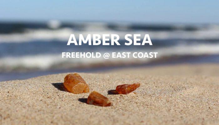 Amber Sea Condo at East Coast